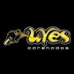 Carenados Uves 1