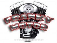 Franky motor